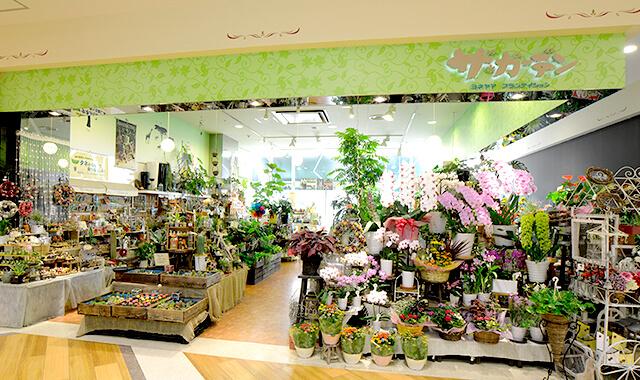 ザ・ガーデン トレッサ横浜店